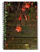 Retaining Wall In Autumn Spiral Notebook