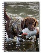 Retrieving Chocolate Labrador Spiral Notebook