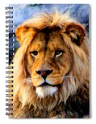 Return Of The King Spiral Notebook