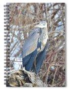 Returning In Winter Spiral Notebook