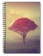 Revelation - 09 Spiral Notebook