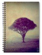 Revelation - 113vt Spiral Notebook