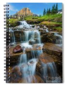 Reynolds Mountain Waterfall Spiral Notebook