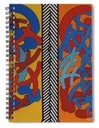 Rfb0704 Spiral Notebook