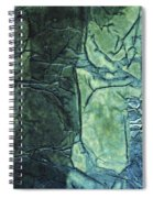 Rhapsody Of Colors 43 Spiral Notebook