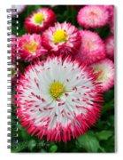 Rhineland-palatinate Greenhouse Spiral Notebook