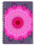 Rhoda Mandala Spiral Notebook