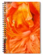 Rhodies Art Prints Orange Rhododendron Flowers Baslee Troutman Spiral Notebook