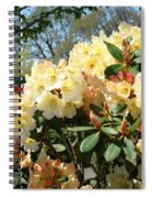 Rhodies Flowers Art Yellow Orange Rhododendrons Garden Spiral Notebook