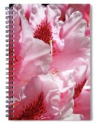 Rhodies Pink Fine Art Photography Rhododendrons Baslee Troutman Spiral Notebook