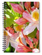 Rhodies Pink Orange Yellow Summer Rhododendron Floral Baslee Troutman Spiral Notebook