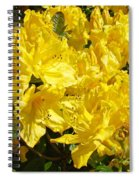 Rhodies Yellow Rhododendrons Art Prints Baslee Troutman Spiral Notebook