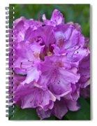 Rhododendron Elegance Spiral Notebook