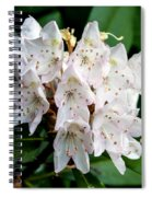 Rhododendron Family Of Flowers Spiral Notebook