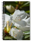 Rhododendron I Spiral Notebook