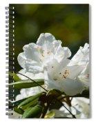 Rhododendron II Spiral Notebook