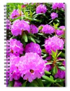 Rhododendrons In Bloom Spiral Notebook