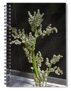 Rhubarb Blossoms Spiral Notebook