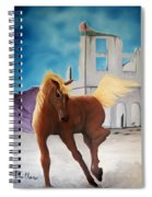 Rhyolite Pony Spiral Notebook