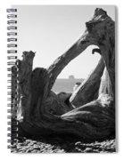 Rialto Beach Cake Rock Driftwood Spiral Notebook