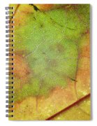 Ribbing Spiral Notebook