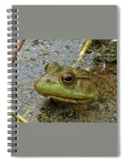 Ribbit Ribbit Spiral Notebook