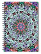Ribbons And Lace Spiral Notebook