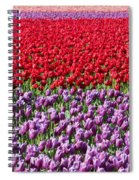 Ribbons Of Color Spiral Notebook