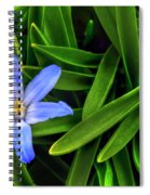 Ribbons Of Spring Spiral Notebook