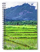Rice Paddies And Mountains Spiral Notebook