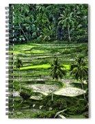 Rice Paddies Spiral Notebook