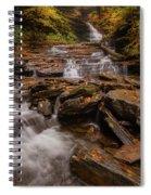 Ricketts Glen 2 Spiral Notebook