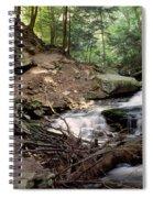 Ricketts Glen Falls 030 Spiral Notebook