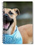 Rico 1 Spiral Notebook