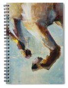 Ride Like You Stole It Spiral Notebook