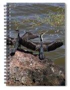 Rift Valley Cormorants Spiral Notebook