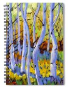 Rigaudon Of Aspens Spiral Notebook