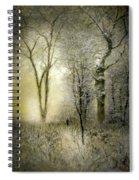 Rimy Forest Windy Daybreak By Laszlo Mednyanszky 1896 Spiral Notebook