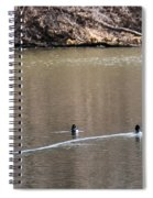 Ring-necked Duck Formation Spiral Notebook