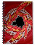 Ring Of Feathers - Abstract Spiral Notebook