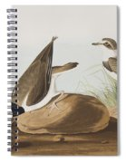 Ring Plover  Spiral Notebook