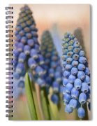 Ringing In Spring Spiral Notebook