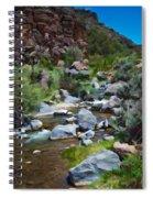 Rio Hondo Arroyo  Spiral Notebook