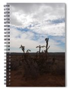 Rio Rancho New Mexico Spiral Notebook