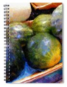 Ripe And Luscious Melons Spiral Notebook