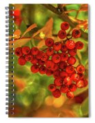 Ripe Berries In Autumn - Patagonia Spiral Notebook