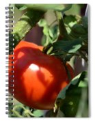 Ripe For Picking Spiral Notebook