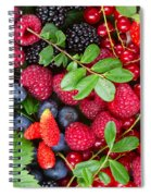 Ripe Of  Fresh Berries Spiral Notebook