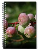 Ripening Spiral Notebook