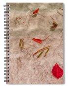 Ripple Spiral Notebook